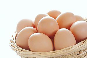 卵は完全栄養食