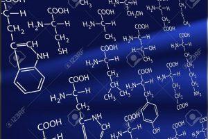 必須アミノ酸メチオニンとは?